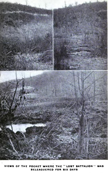 The area where the 'Lost Battalion' were engaged in 1918 (History of Company E, 308th Infantry)