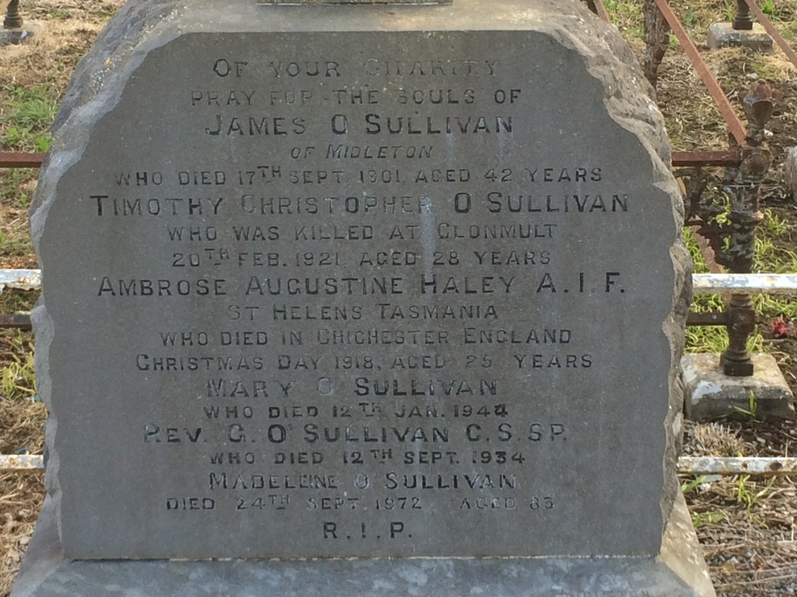 Close up of inscription on the grave of Ambrose Augustine Haley in Midleton (Damian Shiels)